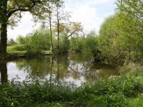 Coppice Lane Pools