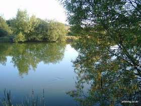 J & S Coarse Fishing Lake