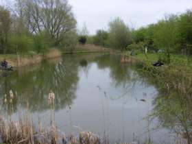 Lakeside Fishery