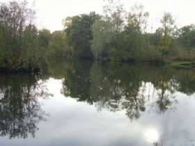 Layfield Lakes