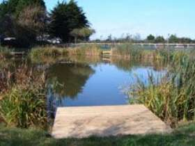 Monkey Tree Holiday Park and Coarse Fishing