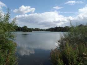 Revesby Fisheries