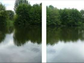 Shallowbrook Fishing Lakes