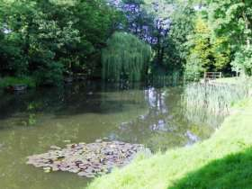 Woodlands Fishery